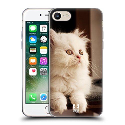 Head Case Designs Chaton Persan Blanc Adorable Races De Chat Populaires Étui Coque en Gel molle pour Apple iPhone 4 / 4S Chaton Persan Blanc Adorable