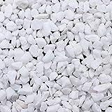 BELLE VOUS Kieselsteine - 3,6kg Mini Weiß Deko Steine für Vasen (ca. 1,2cm Kies) - Pebbles Zierkies Dekogranulat Flusskiesel Granulat zur Dekoration, für Pflanzen, Aquarium, Blumentopf, Basteln