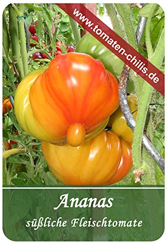 Tomaten Samen - 15 Stück - Ananas - Fleischtomate