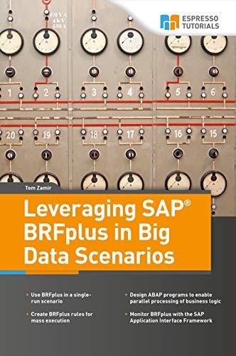 Leveraging SAP BRFplus in Big Data Scenarios (English Edition)
