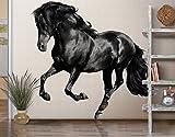 Wandtattoo No.649 Araberhengst Pferde Hengst Stute Fohlen Rappe