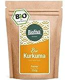Bio-Kurkuma-Pulver (250g) - hochwertige Kurkumawurzel (Curcuma) gemahlen - Curcumin - wiederverschließbarer Frischebeutel - 100% Bio abgefüllt in Deutschland (DE-ÖKO-005)
