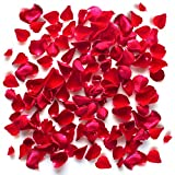 The Twiddlers 1000 Pieces Silk Red Rose Petals - Perfect for Valentines Day - Artificial Odourless, non smell Confetti Flowers for Wedding, Romantic Celebrations,