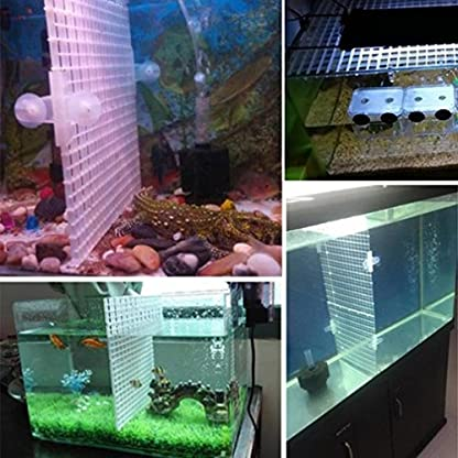 Wetrys 6 Pcs Grid Divider Tray Isolate Board Fish Tank Bottom White Filter Tray Aquarium Crate 2