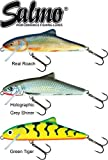 3 Salmo Skinner 10cm Floating - Wobbler zum Spinnfischen auf Hecht, Zander & Barsch, Kunstköder zum Hechtangeln, Twitchbait, Hechtköder
