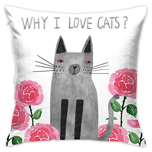 Opi 90iuop Warum ich Katzen Liebe Dekokissenbezug Kissenbezug Car Sofa Home Dekorative 18x18 Kissenbezug