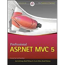 Professional Asp.Net Mvc5