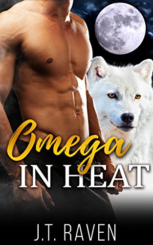 gay-paranormal-omega-in-heat-a-first-time-gay-mpreg-romance-english-edition