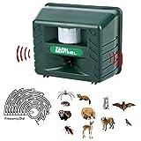 Inperix Katzenschreck, Marderschreck & Hundeschreck – Ultraschall Tiervertreiber Ultraschall abwehr und Blitz – Wetterfest- vertreibt wirksam Ratten, Füchse und andere Wildtiere mit Bewebungssensor