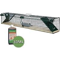 Moorland Trampa animales pequeños - Ratas ratones - 100x15x19cm - 2 Entradas - Safe 6043 - Feromona - Alambre y madera