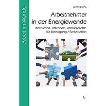 Arbeitnehmer in der Energiewende: Praxisstand, Potentiale, Anreizsysteme für Beteiligung / Partizipation