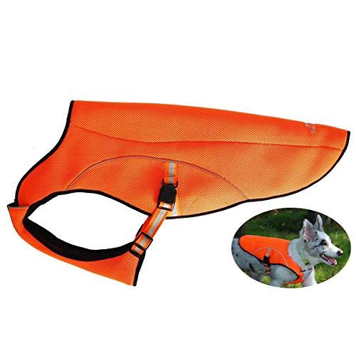 Kühlweste für Hunde,Swamp Cooler, kühlender Hundemantel,Hunde Jacke, Weste mit Reflektoren für mehr Sicherheit, für große Hunde,für Spaziergänge, draußen, Jagd, Training, Camping(Orange)-XL -