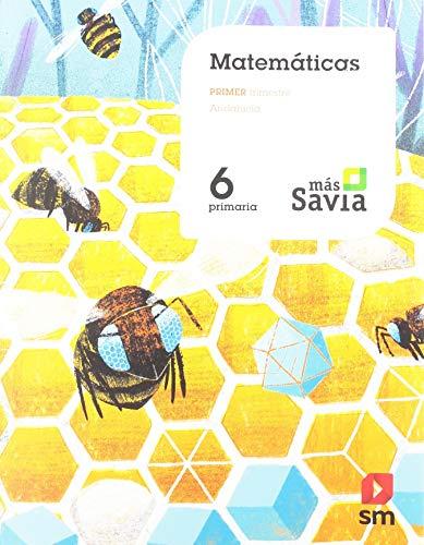 Matemáticas 6 Primaria Mas Savia Andalucía