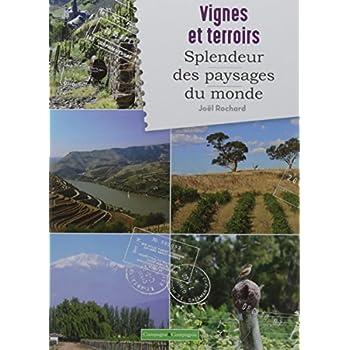 Vignes et splendeurs des paysages
