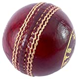 #2: Elan LB-001 High Quality Leather Cricket Test Ball (Red)