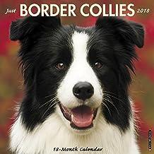 Just Border Collies 2018 Calendar