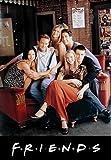 Friends - l'Intégrale de la Série - Saisons 1 à 10 - Coffret DVD