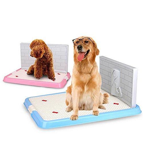 Kondrao Haustier Hund Töpfchen Welpe Toilette mit Simulation Wand zum männlichen Hund Pee Ausbildung Polster Innen- Draussen (S, Blau)