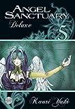Angel Sanctuary Deluxe 5