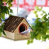 Bird House, Nido di uccello in legno fatto a mano, Birdhouses in legno creativo Nest, Artigianato Casetta per uccelli antisettico solido per Colomba Fringuello Scarafaggio Piccolo animale Colibrì