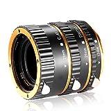 Neewer 3 pièces Tube d' Extension Macro Auto Focus en Métal 13mm, 21mm, 31mm pour Canon EOS EF EF-S Objectif DSLR Caméras, telles que Canon 7D Mark II, 5D Mark II III IV, 1300D, 1200D, 750D, 700D, 600D, 80D , 70D, 60D (Or)