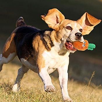 UEETEK Jouets pour chiens qui craque pour les petits chiens Fruits et légumes les jouets en peluche chiot chien (un pack de 5)