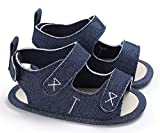 IBBShoes Summer 0-1 Year Old Baby Boy Silicone Low-Slip Sandals Baby Toddler Shoes (12cm(6-12 Months), Blue)