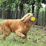 ♣ Tianya - Pet Toys Zahnputzmittel Ball Food Toys Katzenspielzeug Spielzeug Spielzeug Spielzeug für große Hunde