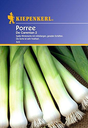 Lauchsamen – Porree De Carentan 2 von Kiepenkerl