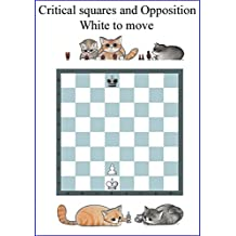 Opposition & Critical Squares: The most important Chess Pattern (Chess patterns Book 4) (English Edition)