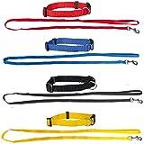 Set aus: 4 Welpenhalsbänder + 4 Welpenleinen im Set 3 Farben ideal für Züchter oder Sparpaket Welpenhalsband mit Leine als Set