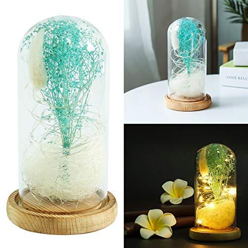 Yinroom Glaskuppel-Lampe Bell-Glas-Anzeigen-Dome-Schönheit und das Biest imitierte sternenklare Himmel-Sterne gefallene Blumenblätter Glaskuppel-hölzerne Unterseite für die Geschenke des Weihnachtsval