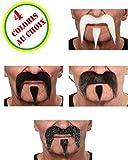 Moustaches Luxe Buffalo Bill (diff. coloris)