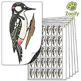 480 x Aufkleber - Specht . Hochwertige selbstklebende Etiketten mit Tiermotiv von Zooify.