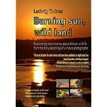 Burning sun, wild land