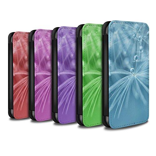 Stuff4 Coque/Etui/Housse Cuir PU Case/Cover pour Apple iPhone 5C / Fleur Vert Design / Gouttes de Fées Collection Pack (6 Pk)
