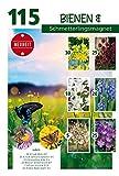 Quedlinburger Bienen- und Schmetterlingsmagnet