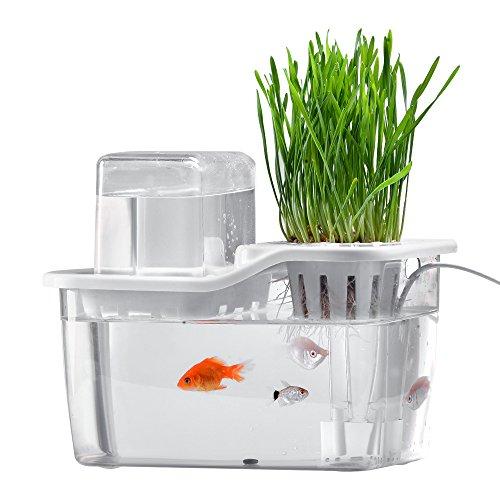 aquarium kosystem test top produkte f r jeden. Black Bedroom Furniture Sets. Home Design Ideas