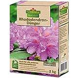 Abono especial para Rododendros