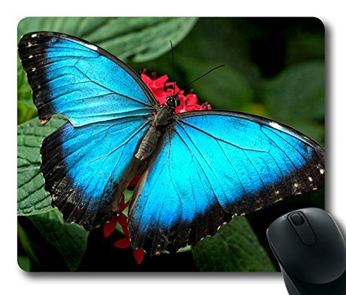 beautiful-blue-butterfly-masterpiece-limited-design-oblong-mouse-pad-by-cases-mousepads
