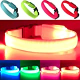 PetSol Mini LED Collar (X-Klein (25cm - 30cm / 9.8