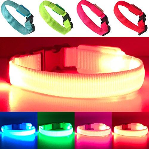PetSol Mini Collier LED Ultra-Brillant pour Chiens X-Petit (25cm - 30cm / 9.8' - 11.8') Rouge