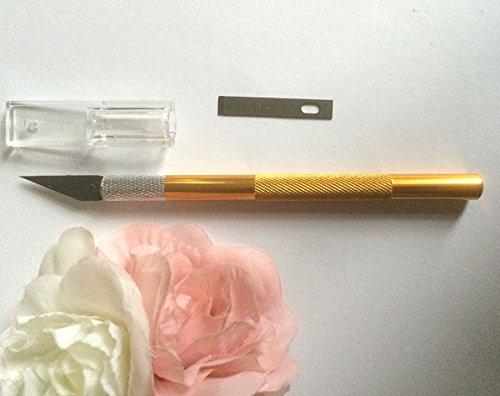 Skalpell Präzisionsmesser Ersatzklinge Modelliermesser Fondant Alu Griff Profi Ausstecher Modellierwerkzeug Tortendeko SC217 (Decor Cake Frozen)
