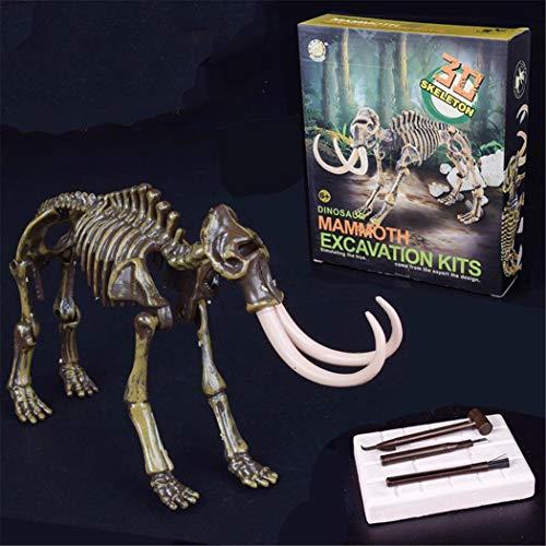 Riklos Kinder Dinosaurier montieren Modell Fossil Archäologie Dinosaurier Ausgrabungen Kits Spielzeug Science Fiction & ()