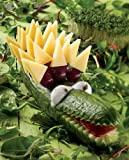 Fun Food: Kreative Ideen aus der Küche - 4