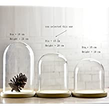 Campana de cristal con bandeja de madera, forma de cúpula, diámetro de 15cm, vidrio, transparente, mediano