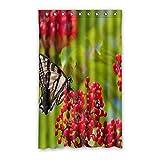 DOUBEE Custom Schmetterling Butterfly Vorhänge Polyester Schiebevorhang Gardinen 132cm x 213cm (1 Stück)