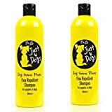 Flea Shampoo For Dogs - Best Reviews Guide