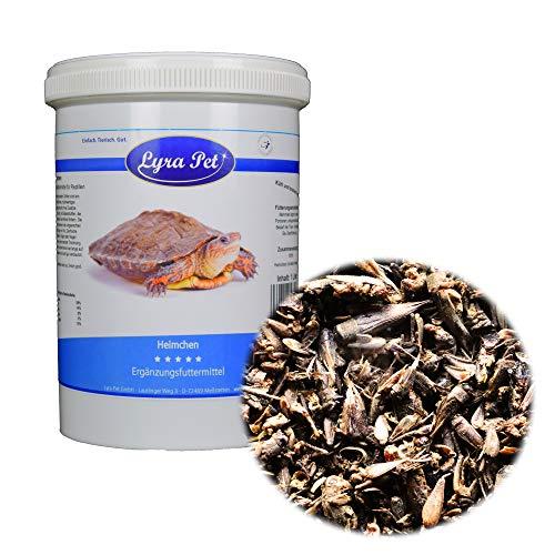 Lyra Pet® 1 L (Liter) Heimchen Grillen Futterinsekten Vögel Reptilien in Dose - Große Grillen