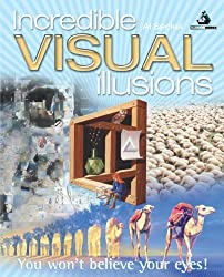 Incredible Visual Illusions by Al Seckel (2010-09-30)